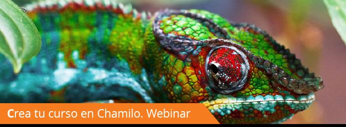 Webinar: cómo crear tu curso en Chamilo LMS